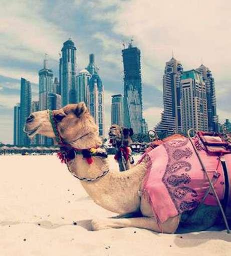 Hen Do Dubai